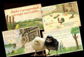 BAJKI Z KRAINY PIECÓW | reż. Andrzej B. Czulda