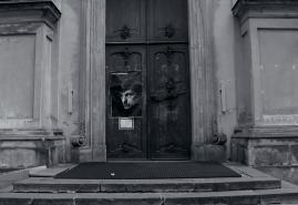 (NIE)OBECNOŚĆ | reż. Magdalena Łazarkiewicz