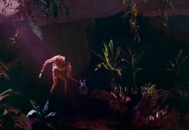 Plantarium | reż. Tomek Ducki