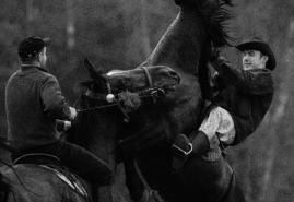 HORSE RIDERS | dir. Anna Gawlita