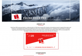 POLISH DOCS PRO AT THE SUNNY SIDE OF THE DOC MARKET CONNECTED EDITION 2020