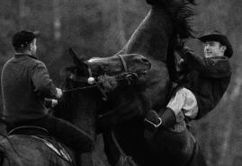 POLISH DOCUMENTARY FILMS AT JI.HLAVA