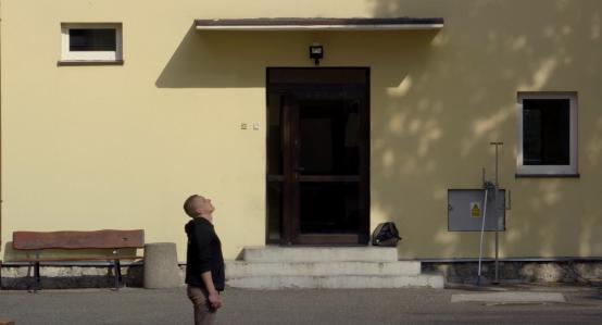EFEKT HALO | reż. Patrycja Polkowska