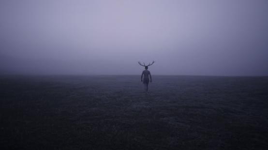 DEER BOY | dir. Katarzyna Gondek