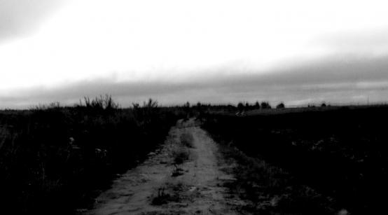 REKONGRODEK | dir. Devin Horan, Margherita Malerba