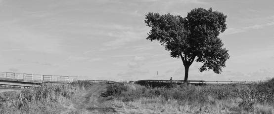 THE STOP | dir. Bartosz Reetz