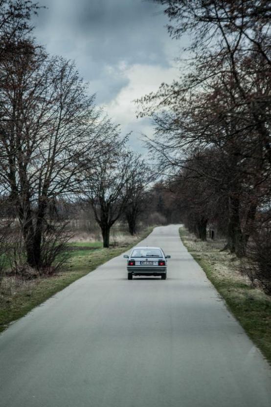 16.03 | dir. Natalia Siwicka